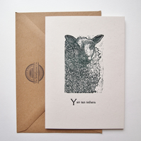 Sheep letterpress card birthday greetings gift blank inside for your message