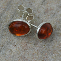 Amber and Sterling Silver Oval Stud Earrings