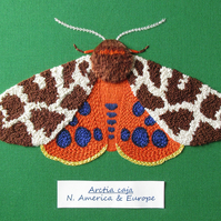 Garden Tiger Moth Embroidery PATTERN