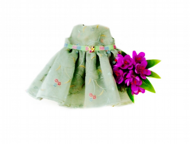 Embroidered organza party dress