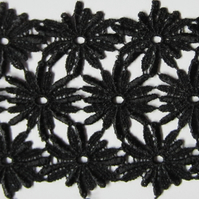 Black Lace Daisies