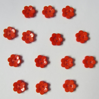 14 Orange Flower Buttons