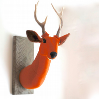 Orange Harris tweed stag trophy. Faux taxidermy handmade deer head sculpture.