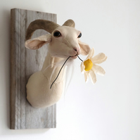 Flower munching mini goat. Faux taxidermy farm animal head textile sculpture