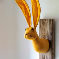 Large mustard yellow Harris tweed hare. Faux taxidermy sculpture. Rabbit.
