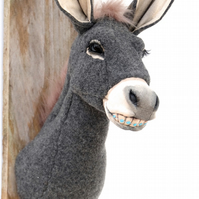 Fun donkey with braces on his teeth wall sculpture. Handmade quirky art. Smile