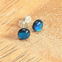 Blue Paua Shell Earrings, Abalone Studs with Sterling Silver