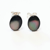 Shell Stud Earrings, Black Lip Mother of Pearl Sterling Silver Studs