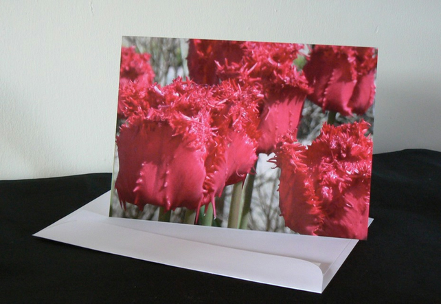 A5 Card - Red Tulips