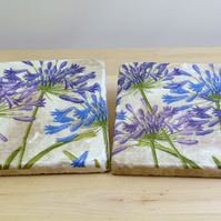 Marble 'Agapanthus' Coasters