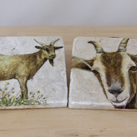 Marble 'Goat' Coasters