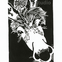 SALE 50% OFF! Miniature Donkey - Original Hand Pulled Linocut Print