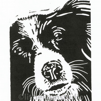 Collie Dog - Dog Art - Original Hand Pulled Linocut Print