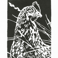 Hen in the long grass - Original Hand Pulled Linocut Print