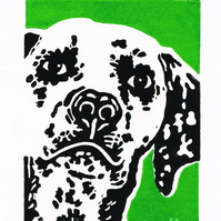 Dalmation Dog - Original Hand Pulled Linocut Print
