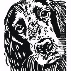 Cocker Spaniel Dog - Original Hand Pulled Linocut Print