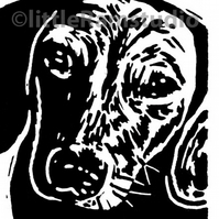 SALE 50% OFF! Dachshund  Dog - Original Hand Pulled Linocut Print