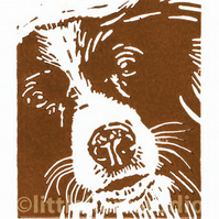Dog - Brown Collie - Original Hand Pulled Linocut Print