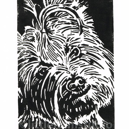 Yorkshire Terrier Black Dog - Original Hand Pulled Linocut Print