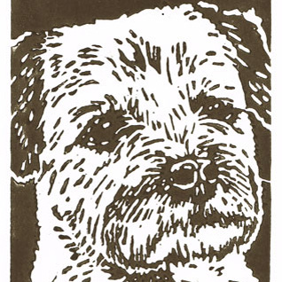 Border Terrier Dog - Original Hand Pulled Linocut Print