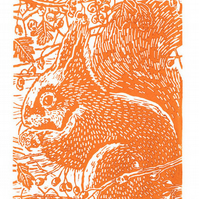 Squirrel in the Hawthorn - Original Hand Pulled Linocut Print