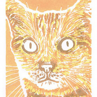 Ginger Cat - Original Hand Pulled Linocut Print