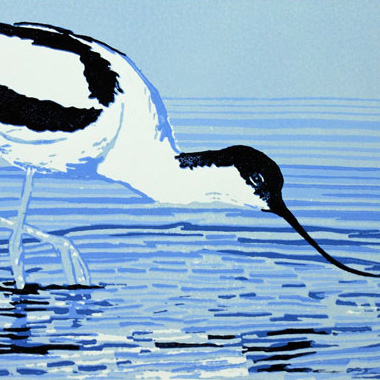 Avocet Bird  - Original, Hand Pulled, Limited Edition Linocut Reduction Print