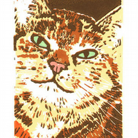 Tabby Cat - Original Limited Edition Linocut Reduction Print