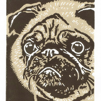 Pug Dog - Original Hand Pulled Linocut Print