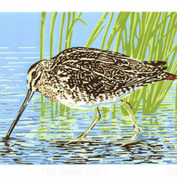 Common Snipe wading bird - Limited Edition Linocut Reduction Print