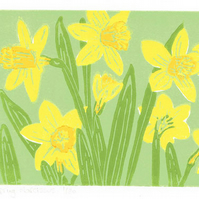 Spring Daffodils - Narcissus - Original limited edition linocut print.