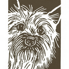 Cairn Terrier Dog - Original Hand Pulled Linocut Print