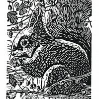 Squirrel art - Squirrel in the Hawthorn  - Original Linocut Print in black