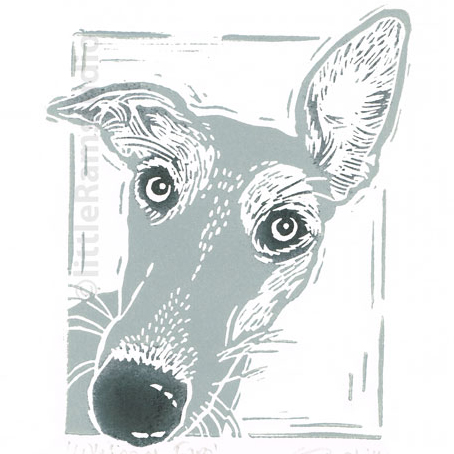 Grey Whippet Dog, Original Linocut Print