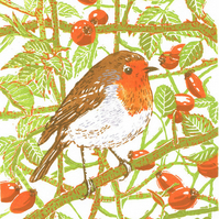 Robin - Original limited edition linocut print