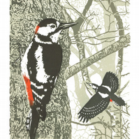 Great Spotted Woodpecker - hand cut limited edition linocut print