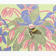 Bee and Borage Original Linocut Print