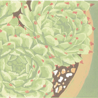 SALE 30% OFF! Succulent plant, Sempervivum - Original Linocut Reduction Print