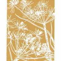 Cow Parsley Seedhead - Original Linocut Print