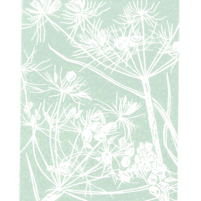 Wild flower seedhead - Cow Parsley - Original Linocut Print
