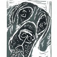 Blue Great Dane Dog - linocut print