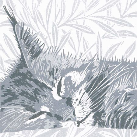 'Grey Maine Coon Cat' - Original linocut print