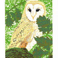 Owl - Barn Owl art - Original Limited Edition Linocut Print