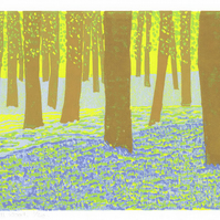 Bluebell Wood linocut reduction print limited edition