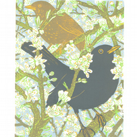Blackthorn Blackbirds - Original hand cut limited edition linocut print
