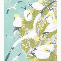 Gannets, sea birds - Original hand cut limited edition linocut print