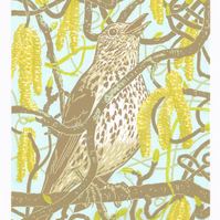 Catkin Song Thrush - Original hand cut limited edition linocut print