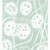 Honesty Seedhead duck egg blue - Handcut Linocut Print