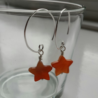 Orange Shell Star and Hoop Earrings