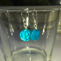 Turquoise Patterned Shell Disc Earrings